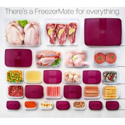 Tupperware FreezerMate Junior II (2) 290ml