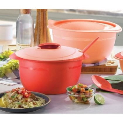 Tupperware Insulated Server (1) 3.5L With Spoon