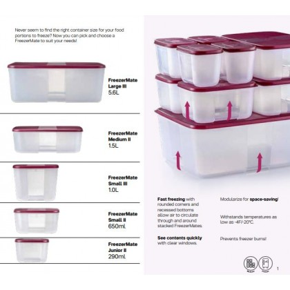 Tupperware FreezerMate Small III (2) 1.0L