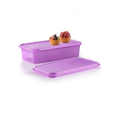 Tupperware Shallow Carry All With Extra Seal (1) 3.2L