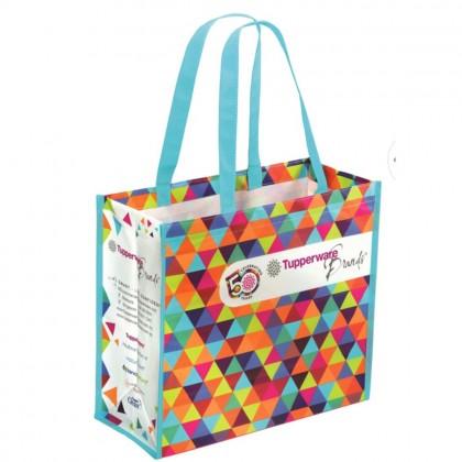 Tupperware 50th Anniversary Bag (1)