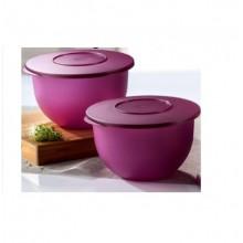 Tupperware Expression Bowl Medium (2) 2.5L